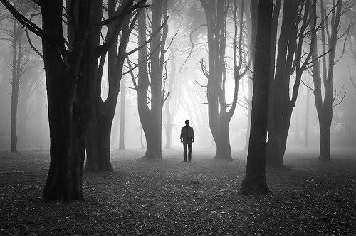 Srbin koji je zalutao u šumi na granici Češke i Nemačke, pronašao nešto što je naš zaborav i naša sramota!