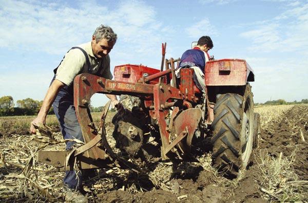 srbija- seljak- poljoprivrednik