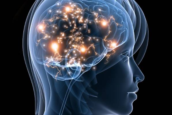 covek- mozak- um