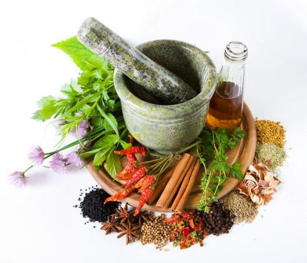 priroda- lekovi- biljke