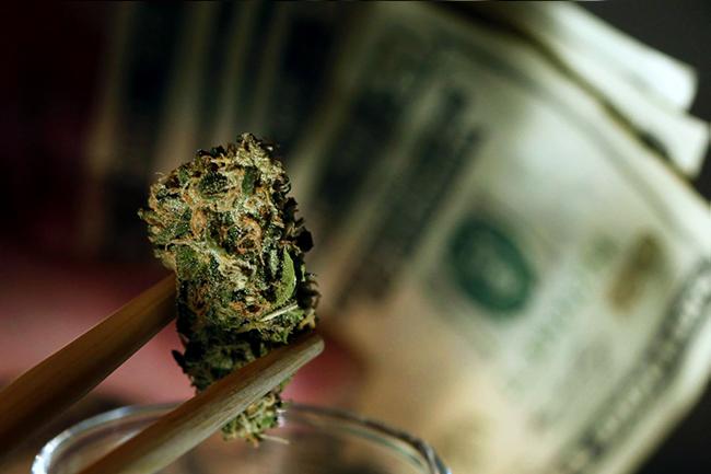 marihuana- trava- kanabis