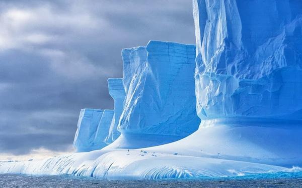 antartik- led