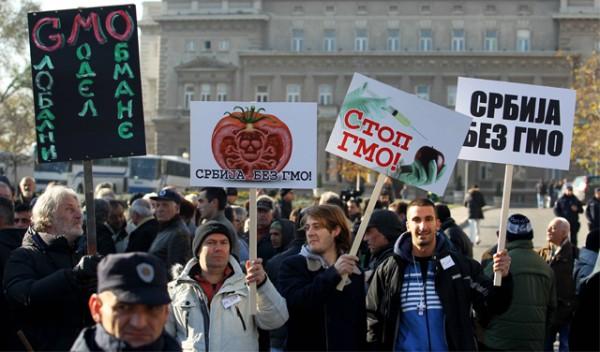 gmo protest04