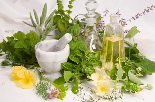 lekovite biljke