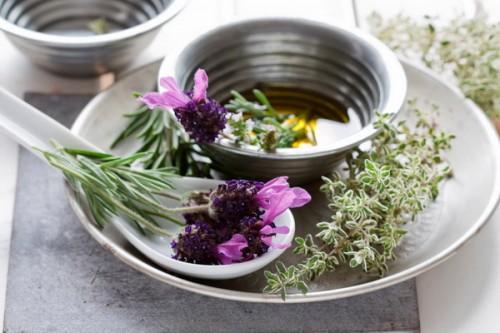 lekovite-biljke