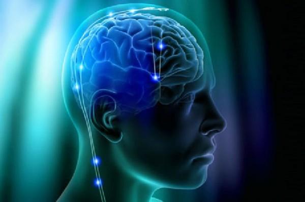 alchajmer mozak