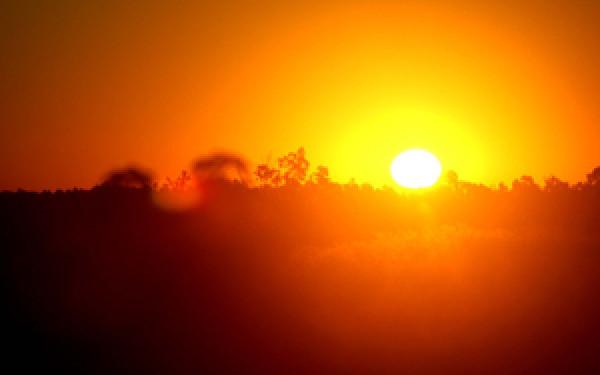 sunce- vrucina