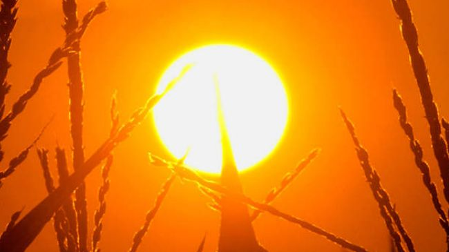 Kreće afrički udar, spremite se za pakao: Od subote počinje divljanje temperature, čeka nas 38 STEPENI!
