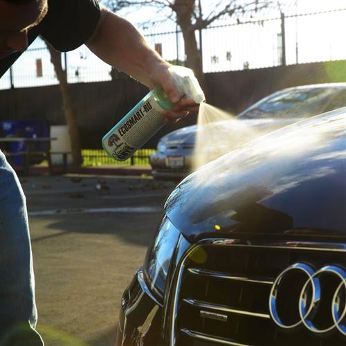 NAPRSKAO SPREJ PROTIV INSEKATA NA ČARAPU I POČEO DA ČISTI AUTO: Rezultat će vas zabezeknuti!- VIDEO