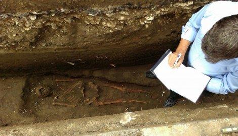 skelet- kostur