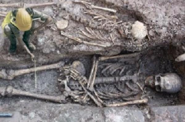 divovi- skelet- kostur 2
