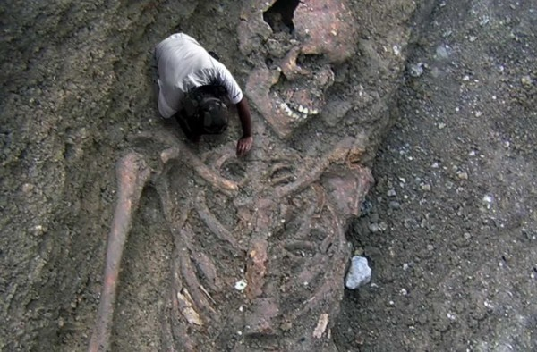 divovi- skelet- kostur