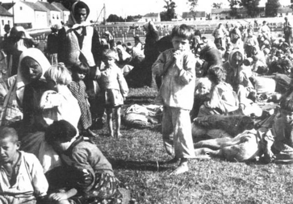 jasenovac 1