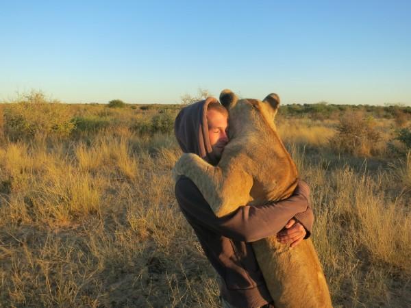 OVO ĆE VAS OBORITI S NOGU: Lavica zagrlila čoveka koji joj je spasao život! (VIDEO)