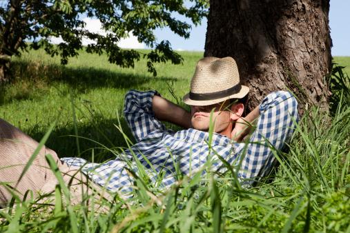 priroda- odmor- drvo