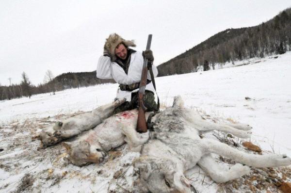 lovac- vukovi