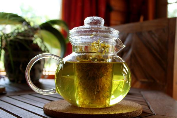 Čaj od korena maslačka: Evo zašto čuveni doktor Oz savetuje da se obavezno koristi ovaj čaj!