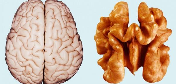 orah- mozak