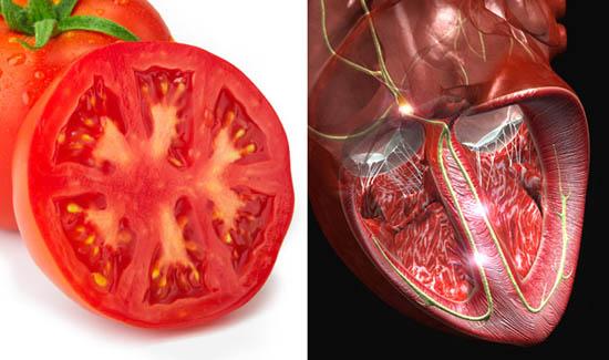 paradajz- srce