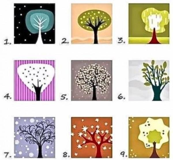 TEST LIČNOSTI: Odaberite jedno drvo i saznajte šta to govori o vama