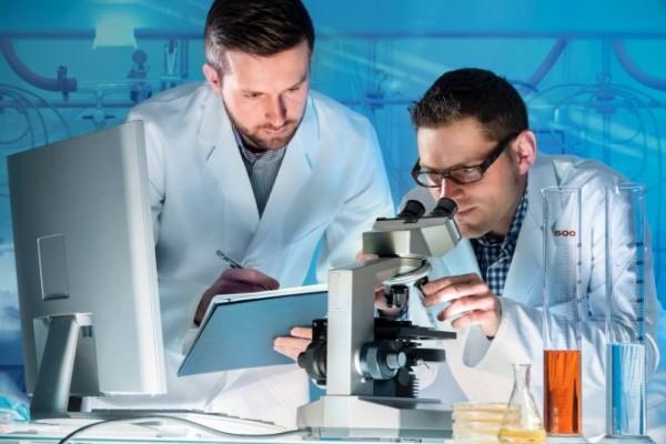 Otkriven prirodni lek koji će moći da pomogne u izlečenju raka!