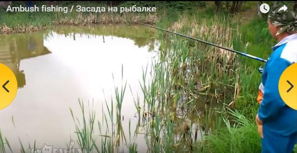 covek- pecanje