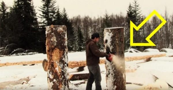 haski-skulptura-drvo