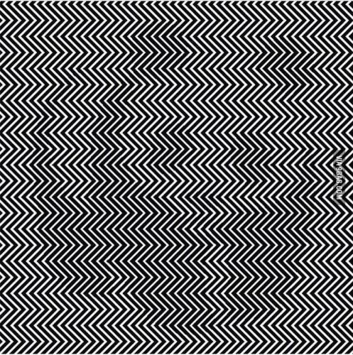 panda-test