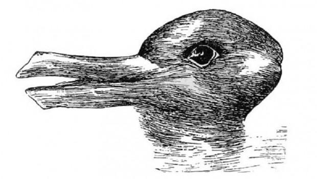 zec-patka