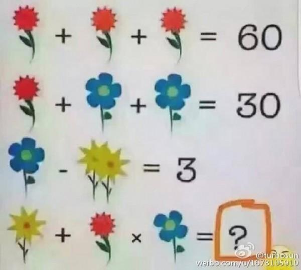 cvetovi-jednacina