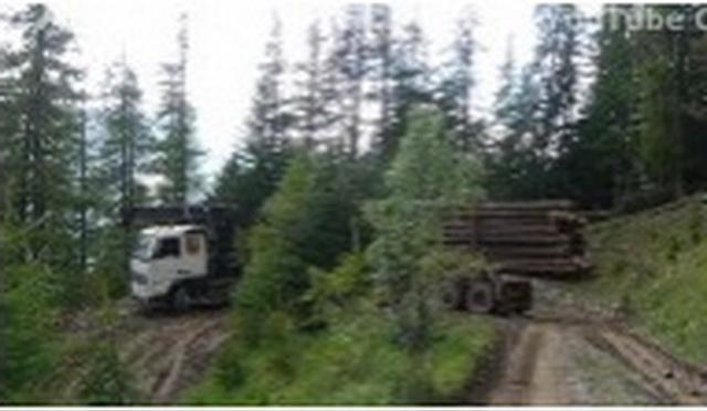 kamion-suma