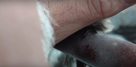 Vrapčić se zaledio čim je stao na metalnu šipku: Tada je ovaj čovek stavio dlan na njega i počela je magija! (VIDEO)