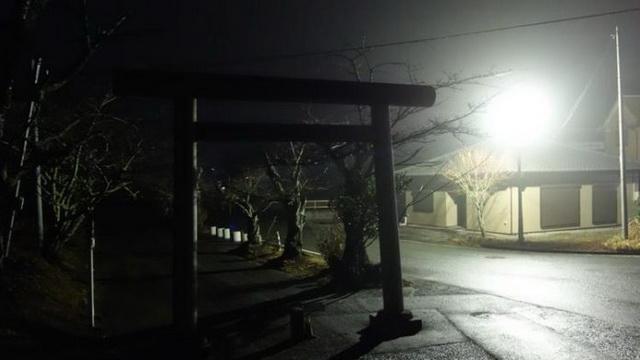 OSTALI U ŠOKU: Vratili se kućama nakon NUKLEARNE KATASTROFE, a dočekale su ih RADIOAKTIVNE ZVERI (VIDEO)