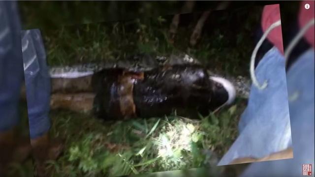 Najužasnija moguća smrt: Piton progutao mladića (25), životinju rasporili da bi izvadili telo! (UZNEMIRUJUĆ SNIMAK)