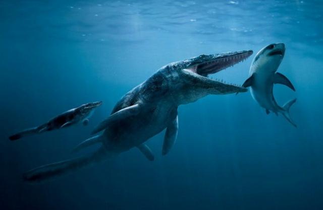 NAUČNICI ZAPREPAŠĆENI: Šta je moglo da u jednom zalogaju pojede ajkulu od tri metra i odjuri na ogromnu dubinu tako brzo! (VIDEO)