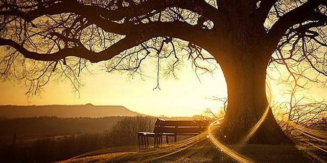 BOG IMA PLAN ZA VAS: Priča pomoću koje ćete shvatiti da se vaše želje UVEK ostvaruju!
