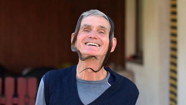 Mićo Pantić je GOSPODAR ZMIJA, ujele su ga 300 puta: Leči ljude na neverovatan način od ugriza otrovnica, čak i priča sa najopasnijima (FOTO)