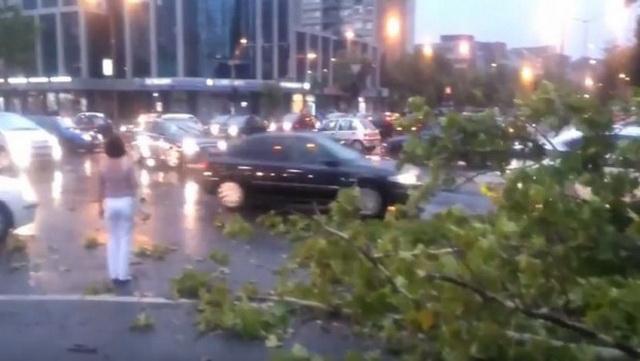 Užasno nevreme u Novom Sadu- Vetar čupao drveće, na ulicama potop (VIDEO)