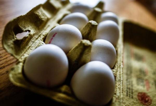 Kakve su POSLEDICE skandala sa otrovnim jajaima?