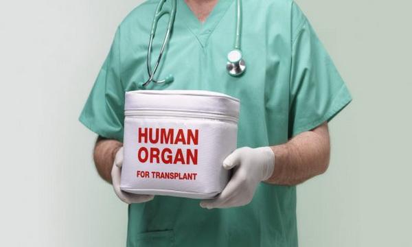 organi- hirurzi- lekari- doktori