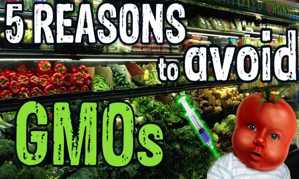 ZASTRAŠUJUĆA VEST: GMO ULAZI NA SRPSKO TRŽIŠTE posle 2020. godine, i to UZ DOZVOLU DRŽAVE